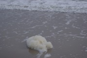 Water Foam Amelia island