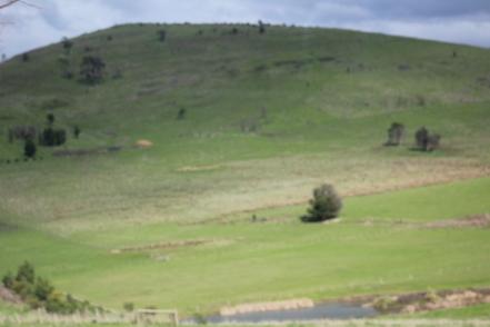 Australian hills