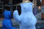 luka facing bear