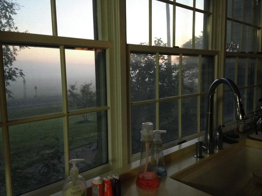 FF_Rochelle Wisoff-Fields_kitchen-window
