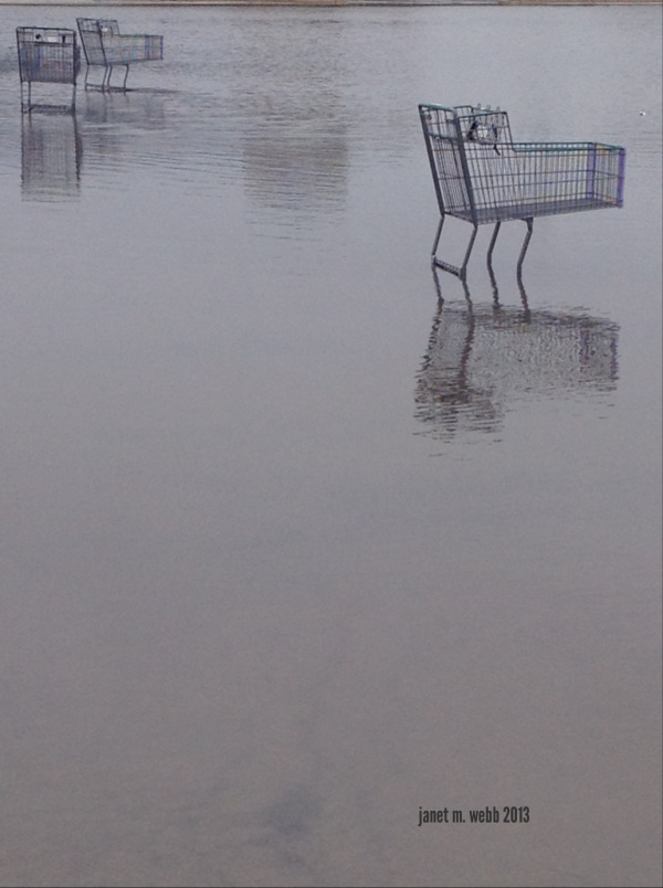 FF_photo-88_shopping carts