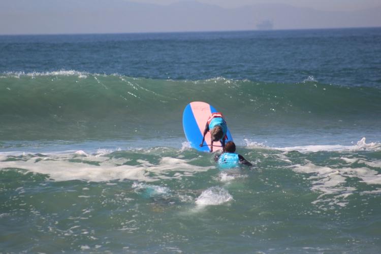 huntington-beach_dog-surf_sept-25-2016-287