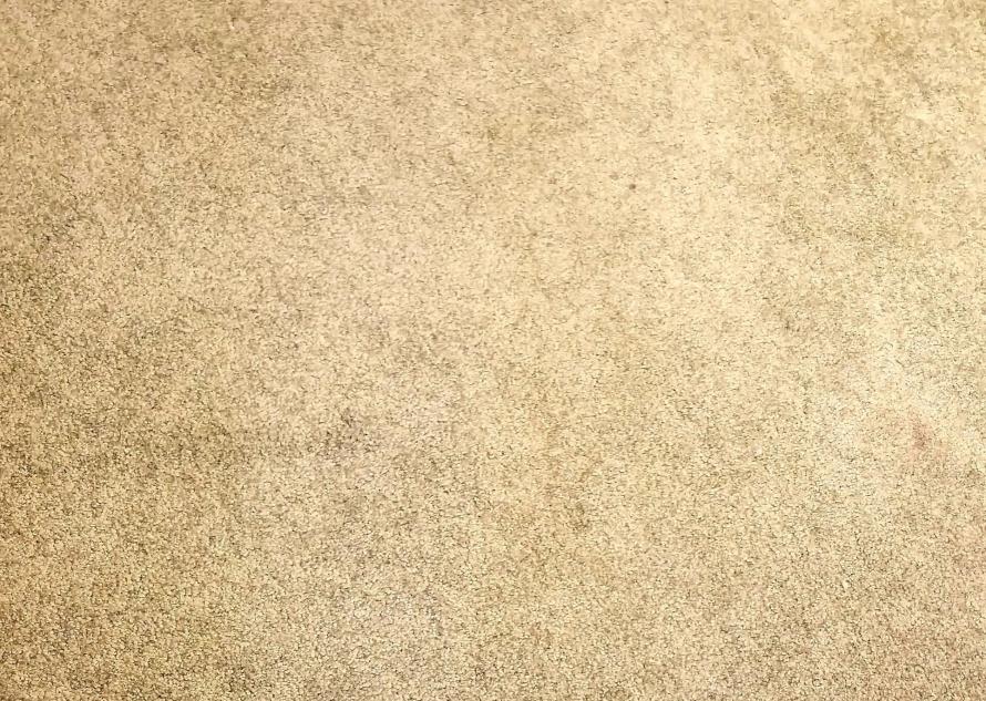lime carpet